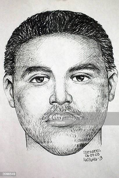 Miami Police sketch shows a suspect wanted in at least seven rapes since September 2002 June 19 2003 in Miami Florida The rapist has been connected...