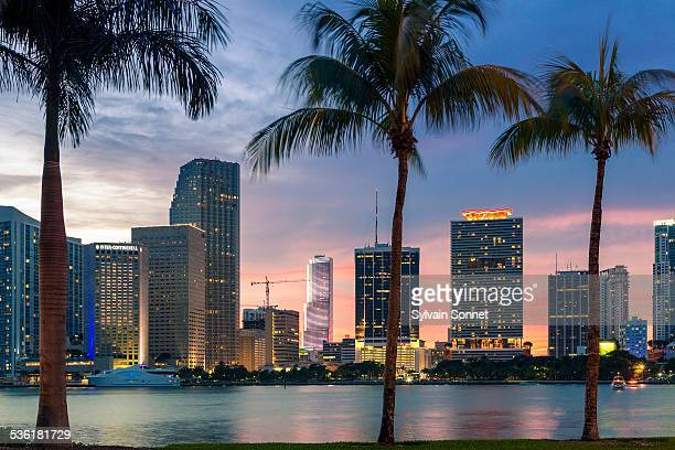 Miami skyline at dusk