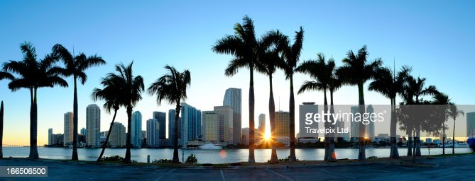 Miami skyline viewed over marina