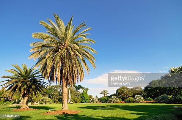 miami tropical park