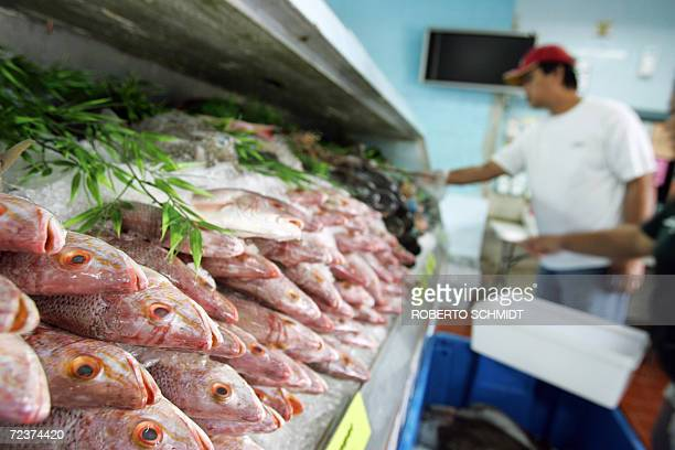 A customer looks at fresh fish at a local fish market in Miami 03 November 2006 A recent study by the Institute of Medecine says that eating fish...