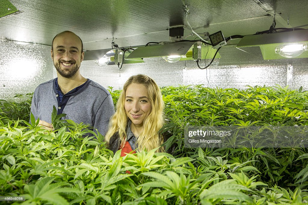 Micah Sherman and Nicole Graf who moved from Brooklyn NY to cultivate cannabis pause with the 'mother plants' which will seed their 7000 sq feet...