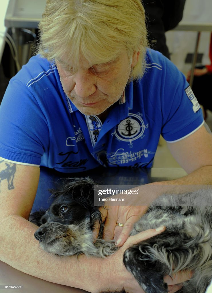 Michael Aurich comforts his cocker spaniel, who is suffering from leukemia, during a meeting with a veterinarian at the Dueppel animal clinic on April 29, 2013 in Berlin, Germany. The Dueppel clinic consists of two separate facilities, one for horses and other large animals, the second for small animals. The Dueppel clinic belongs to the Freie Universitaet Berlin university and is one of five university veterinary clinics in Germany. The clinic for small animals is now the most modern in Germany.