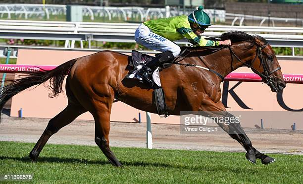 Michael Dee riding Dan Zephyr winning Race 8 Ascot Racecourse Trophy during Black Caviar Lightning Stakes Day at Flemington Racecourse on February 20...