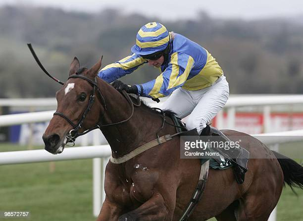 Michael Fogarty on Divine Rhapsody wins The Landrover Bumper race at Punchestown Racecourse on April 20 2010 in Naas Republic of Ireland