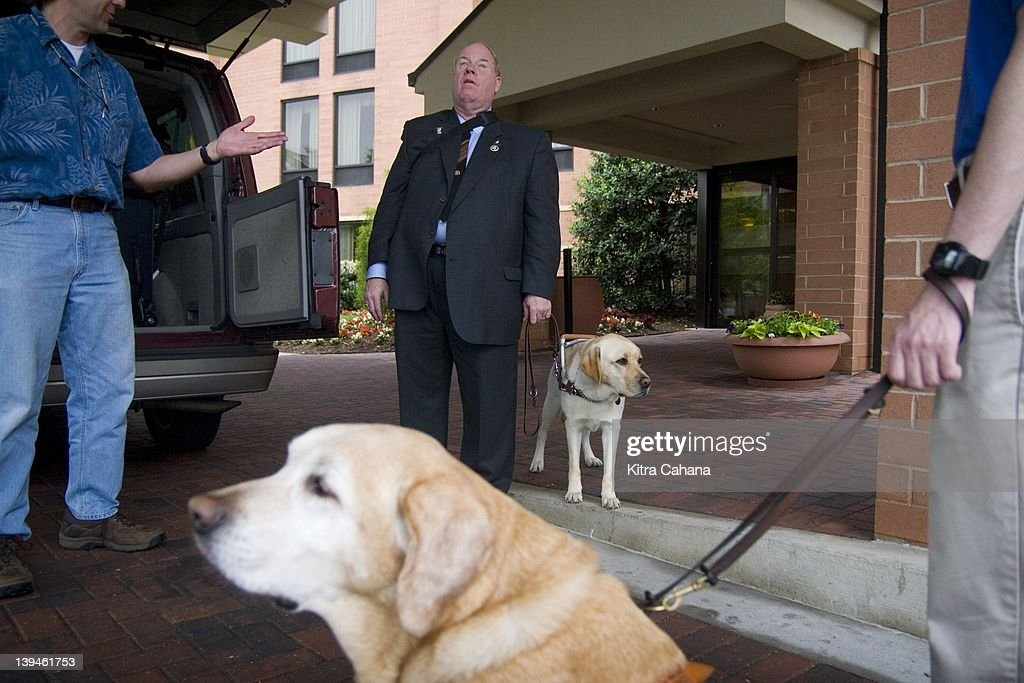 Michael Hingson, a a successful blind businessman and sales manager who survived the September 11th terrorist attacks in 2001 on the World Trade Center, arrives with his guide dog Roselle in Baltimore, Maryland. Hingson was working on the 78th floor at the time of the attacks and immediately, along with his guide dog Roselle, stepped in to help guide other workers down the building. He is a spokesman for Guide Dogs For The Blind, an organization that promotes the use of guide dogs for visually impaired individuals.