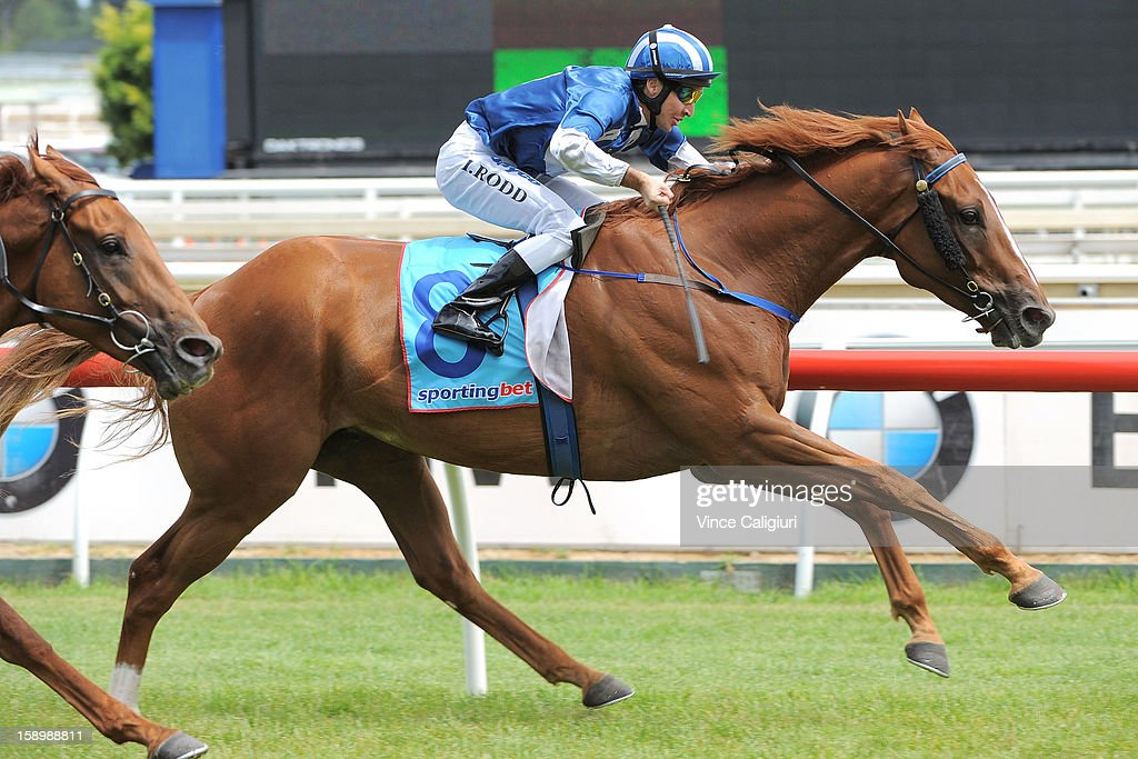 <a gi-track='captionPersonalityLinkClicked' href=/galleries/search?phrase=Michael+Rodd&family=editorial&specificpeople=850617 ng-click='$event.stopPropagation()'>Michael Rodd</a> riding Khalifa wins the Swettenham Stud Summer Championship Heat 5 during Caulfield racing at Caulfield Racecourse on January 5, 2013 in Melbourne, Australia.