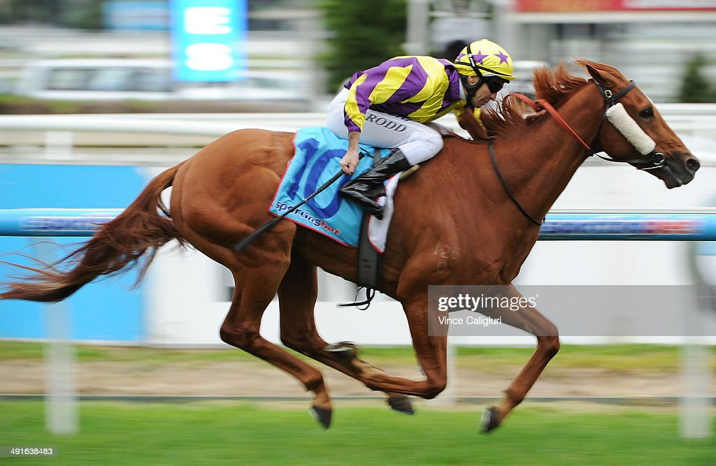 Michael Rodd riding Sonntag wins Race 7 the ALH Group Handicap during Melbourne Racing at Caulfield Racecourse on May 17 2014 in Melbourne Australia