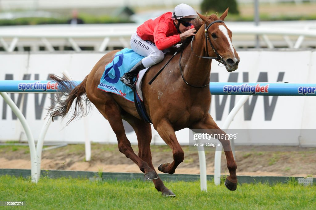 Michael Rodd riding Thiamandi wins Race 5, the Slickpix Bletchingly Stakes during Melbourne Racing at Caulfield Racecourse on July 26, 2014 in Melbourne, Australia.