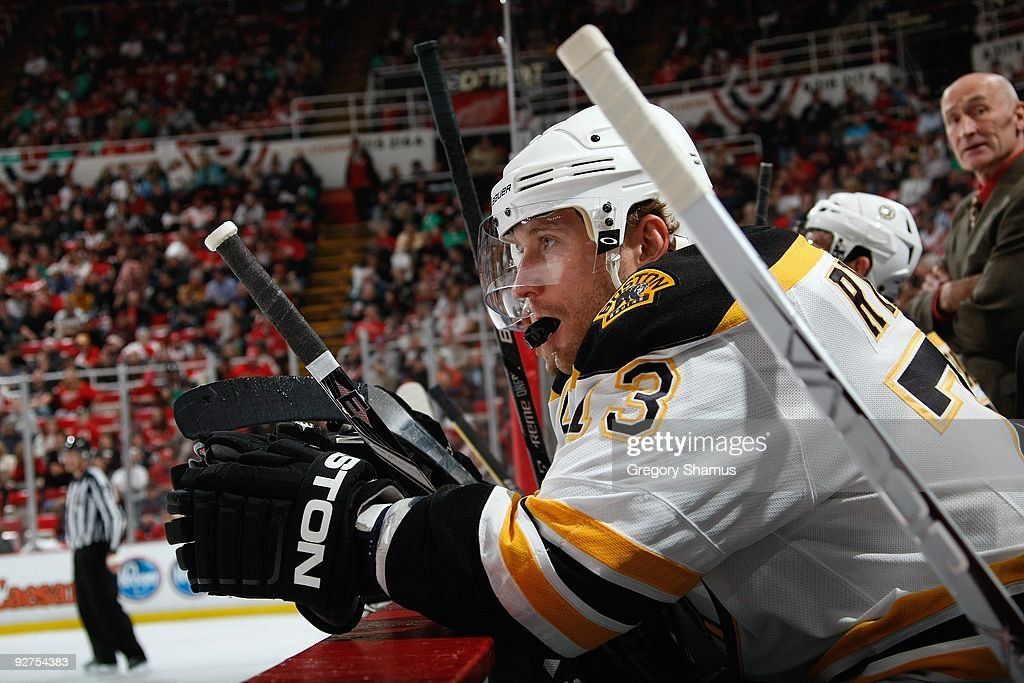 Michael Ryder #73 of the Boston Bruins looks on during the game against the Detroit Red Wings on November 3, 2009 at Joe Louis Arena in Detroit, Michigan.