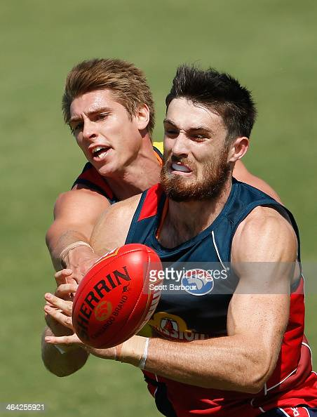 Michael Talia and Tom Campbell of the Bulldogs compete for the ball during a Western Bulldogs AFL preseason training session at Whitten Oval on...