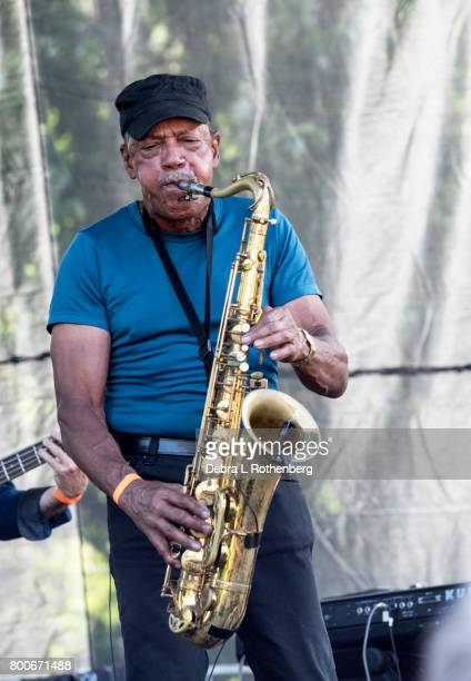 Michael 'Tunes' Antunes of John Cafferty and The Beaver Brown Band perform at the RocklandBergen Music Festival at German Masonic Park on June 24...