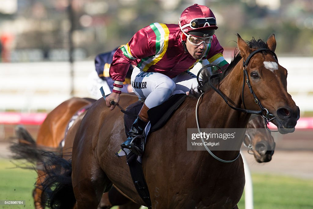 <a gi-track='captionPersonalityLinkClicked' href=/galleries/search?phrase=Michael+Walker+-+Jockey&family=editorial&specificpeople=4760293 ng-click='$event.stopPropagation()'>Michael Walker</a> raises the whip riding Jacquinot Bay to win Race 5, during Melbourne Racing at Flemington Racecourse on June 25, 2016 in Melbourne, Australia.