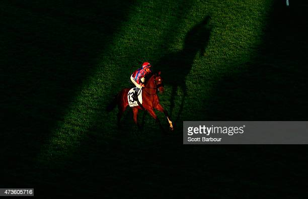 Michael Walker rides Tips And Beers through a shaft of light in race 9 the Charter KC BSP Lawyers Plate during Taralye Race Day at Caulfield...