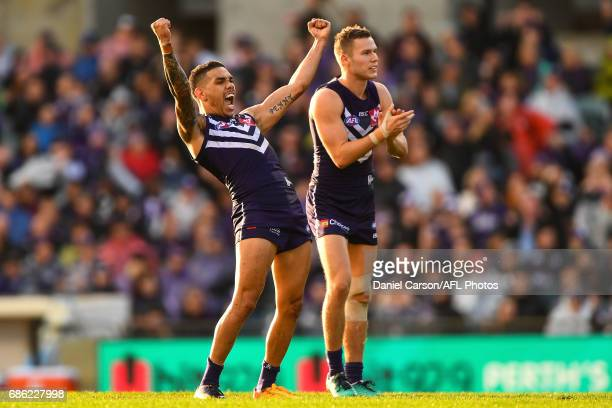 Michael Walters of the Dockers celebrates a goal during the 2017 AFL round 09 match between the Fremantle Dockers and the Carlton Blues at Domain...