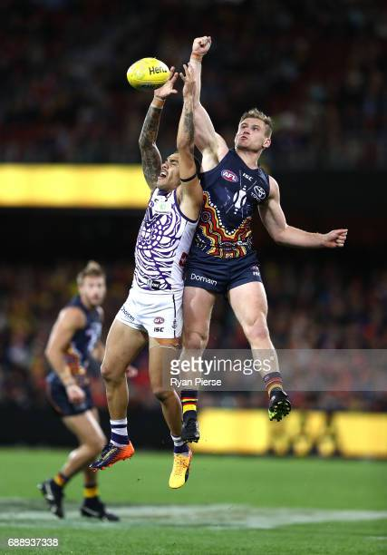 Michael Walters of the Dockers is spolied by Rory Laird of the Crows during the round 10 AFL match between the Adelaide Crows and the Fremantle...