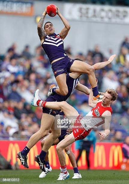 Michael Walters of the Dockers takes a spectacular mark over Callum Mills of the Swans and Sam Collins of the Dockers during the 2016 AFL Round 19...