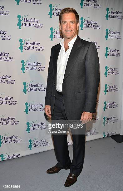 Michael Weatherly attends Healthy Child Healthy World's Mom On A Mission 6th Annual Awards Gala at The London Hotel on October 29 2014 in West...