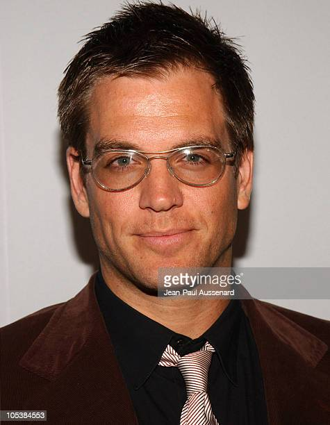 Michael Weatherly during CBS and UPN 2005 TCA Party Arrivals at Quixote Studios in Los Angeles California United States