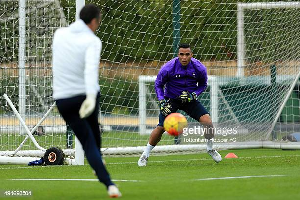 Michel Vorm of Tottenham Hotspur during a training session at the club's training ground on October 28 2015 in Enfield England