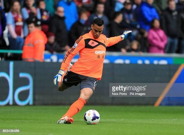 Michel Vorm Swansea City goalkeeper