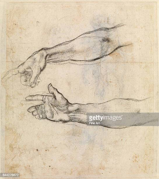 Michelangelo Buonarroti Study of two arms for 'The Drunkenness of Noah' in the Sistine Chapel c 15089 chalk on paper 205 x 16 cm Museum Boijmans van...