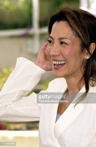 Michelle Yeoh during Cannes 2002 'Official Jury' Photo Call at Palais Des Festivals in Cannes France