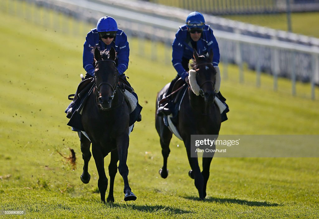 Mickael Barzalona riding Cloth Of Stars (L) have a racecourse gallop during the 'Breakfast with the Stars' morning at Epsom Racecourse on May 24, 2016 in Epsom, England.