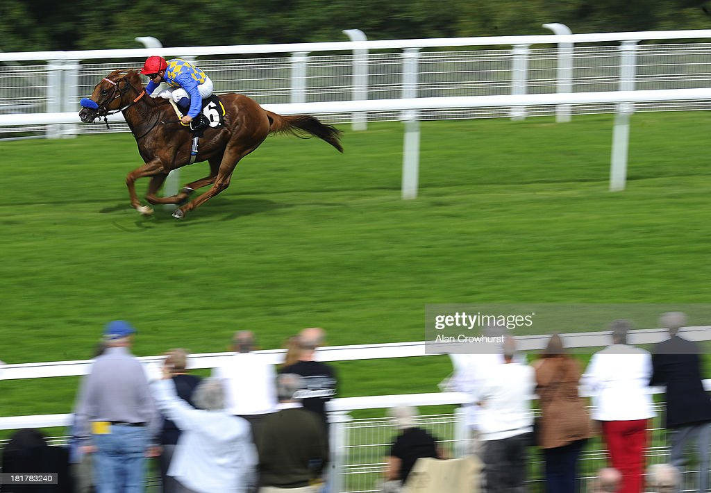 Mickael Barzalona riding Fracking win The British Stallion Studs EBF Maiden Stakes at Goodwood racecourse on September 25, 2013 in Chichester, England.