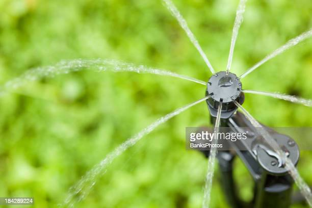 Micro Sprinkler Irrigation Head against Green Roof Background