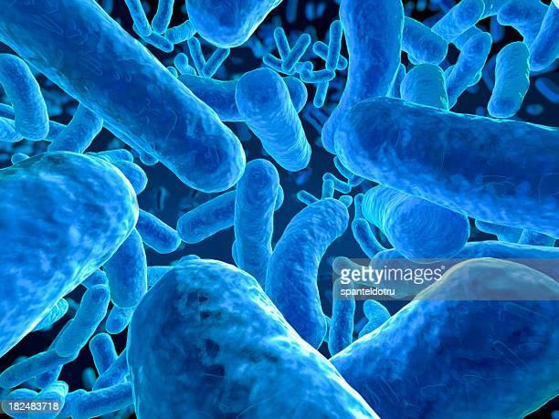 Microbios en primer plano