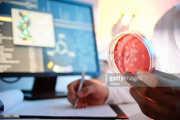 Culture Microbiological