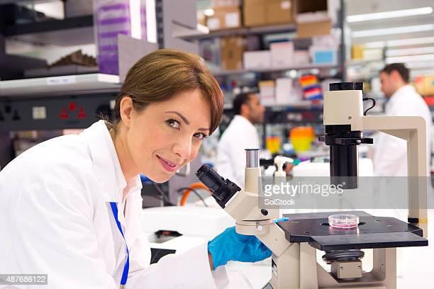 Microscopist at work
