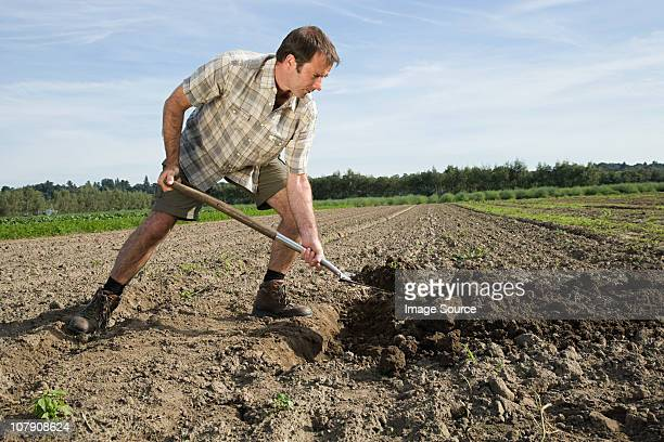 Mid adult man digging in field