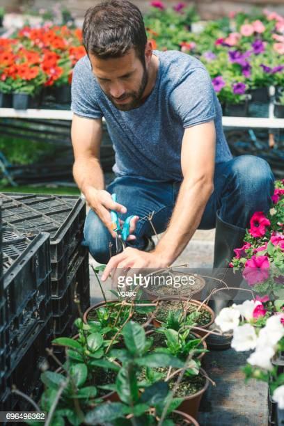 Mid adult man working in botanical garden
