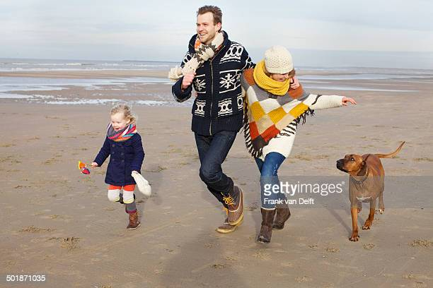 Mid adult parents, daughter and dog running on beach, Bloemendaal aan Zee, Netherlands