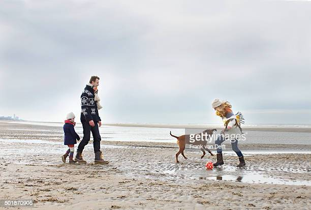 Mid adult parents with daughter and dog playing football on beach, Bloemendaal aan Zee, Netherlands