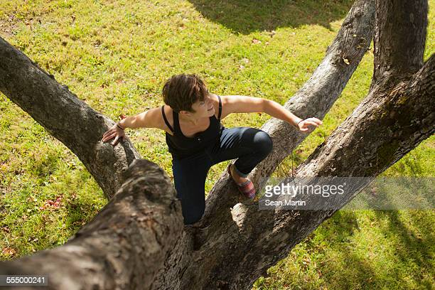 Mid adult woman climbing up tree
