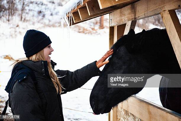 Mid adult woman petting horse in stable