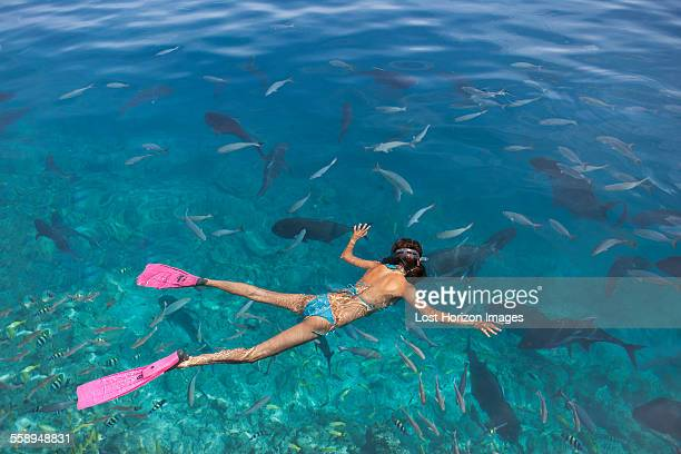 Mid adult woman snorkeling watching fish
