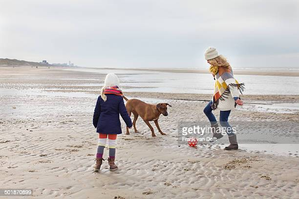 Mid adult woman with daughter and dog playing football on beach, Bloemendaal aan Zee, Netherlands