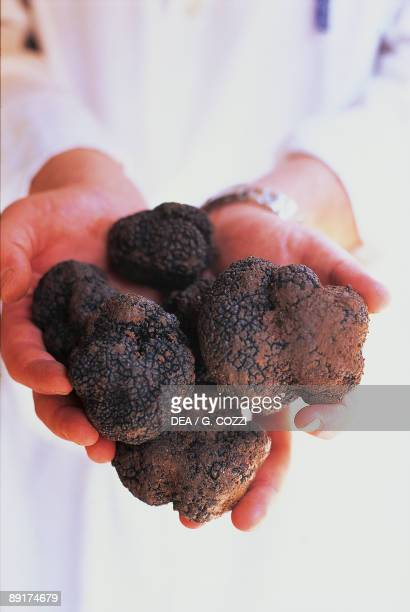 Mid section view of a person holding black truffles