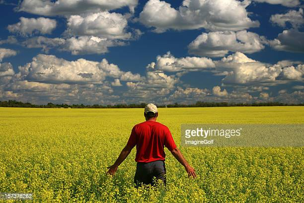 Middle Aged Caucasian Farmer in Yellow Canola Field