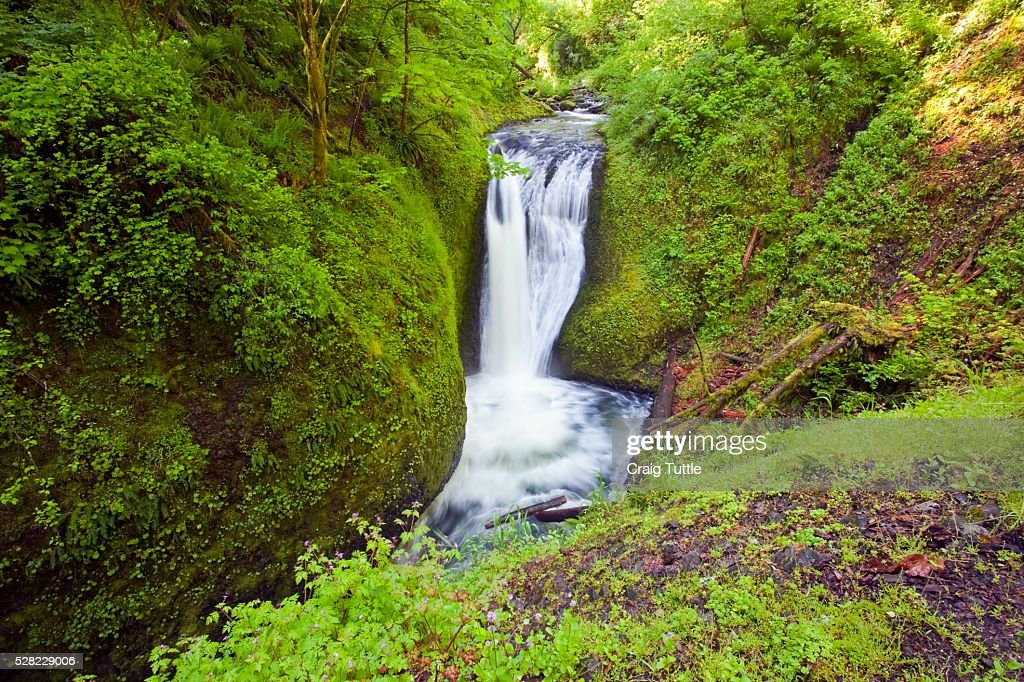 Middle Oneonta Falls In Columbia River Gorge National Scenic Area