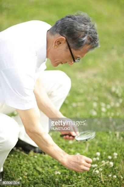 middle-aged man observing grass in the park