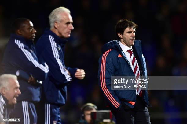 Middlesbrough manager Aitor Karanka on the touchline