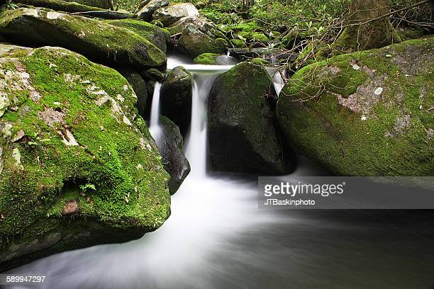 Midnight hole, great smoky mountains National Par