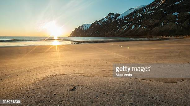 Midnight sun at the beach