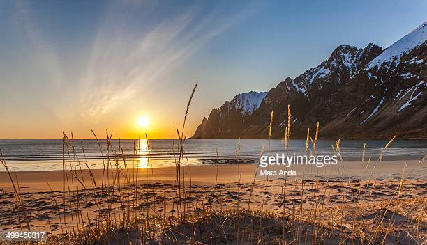 Midnight Sun Senja
