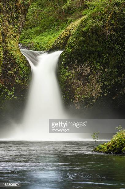 Mighty waterfall thundering into wilderness forest pool